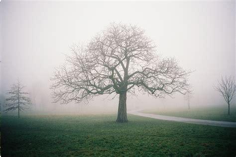 Tumblr Landscape Photos