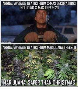ANNUAL AVERAGE DEATHS FROM X-Mas DECORATIONS INCLUDING X ...