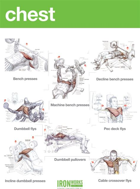 at home chest exercises chest workout aa health fitness