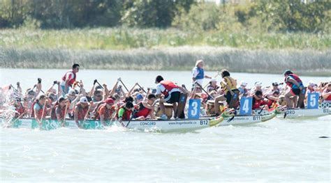 Steveston Dragon Boat Festival 2017 Results by 32 Free Things To Do In Vancouver This August Daily Hive