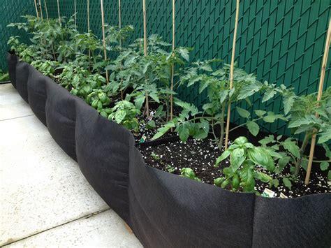 la culture potag 232 re en bacs ou en pots jardin2m
