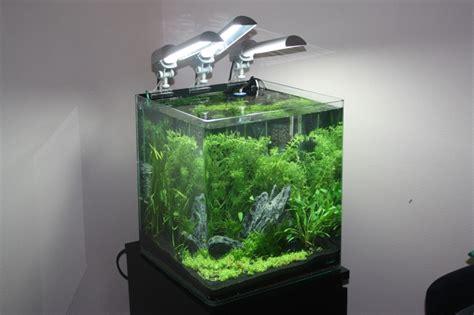 aquarium nano cube 60l images