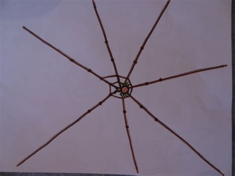 dessiner une toile d araign 233 e centerblog