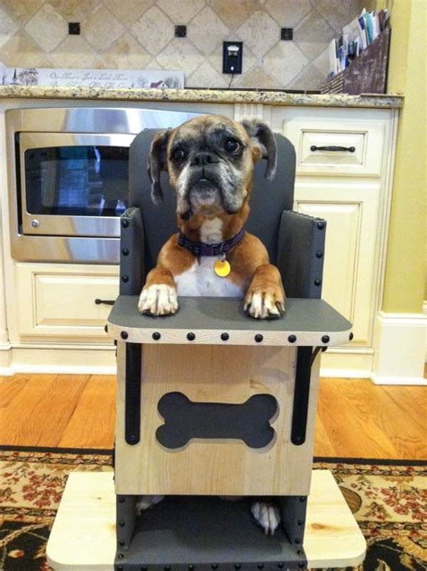 we build bailey chairs for dogs diagnosed with canine