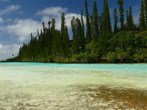 panoramio photo of isle of pines aquarium 2011