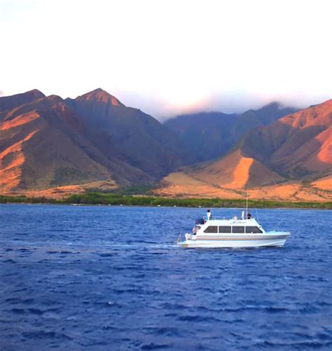 Maui Boat Tours by Maui Boat Trips Small Group Boat Tours On Maui Hawaii