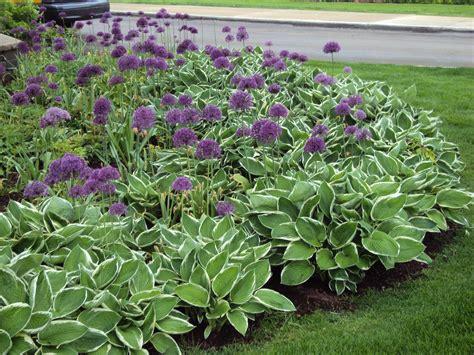 desiging a perennial flower bed glenns garden gardening