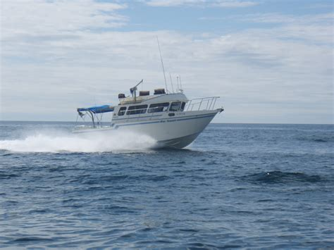 Buy Boats Online Canada by Different Types Of Fishing Boats For Sale Buy Canada