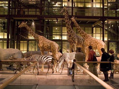 grande galerie de l evolution museums in 5e arrondissement