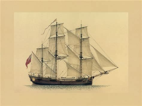 Boat Names Of The First Fleet by The Eleven Ships First Fleet Fellowship Victoria Inc