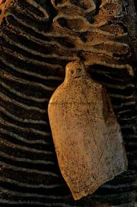15,000 year old ivory figurine made out of a mammoth tooth ...