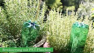 Pflanzen Bewässern Mit Plastikflasche : pflanzen mit pet flaschen bew ssern mein sch ner garten ~ Markanthonyermac.com Haus und Dekorationen