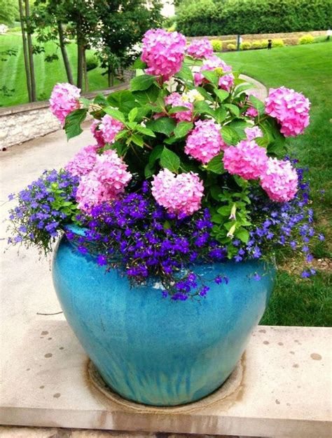 summer container planting beautiful planters and summer