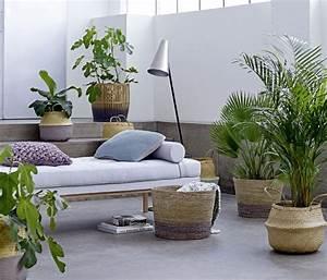 Pflanzen Für Wohnzimmer : garten feeling im wohnzimmer gr ne oase ~ Markanthonyermac.com Haus und Dekorationen