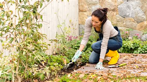 How To Prepare Your Garden For Winter  Todaycom