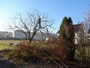 Garten Was Tun Im März : garten tipp was ist im garten zu tun wenn der sommer zu ende ist ~ Markanthonyermac.com Haus und Dekorationen