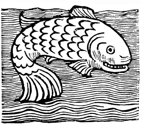 Medieval Boat Drawing by Leviathan Fish Engraving Drawing By