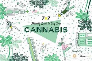 The Bay Area's Best Cannabis Dispensaries, Deliveries ...