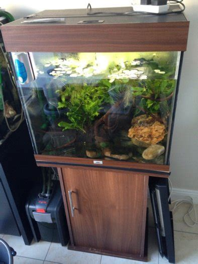 juwel lido 120 liters fish tank for sale in clondalkin dublin from gu