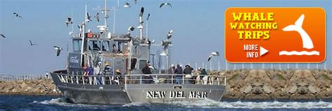 Party Boat Fishing Los Angeles by Marina Del Rey Sportfishing Los Angeles Sportfishing