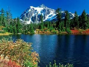 Beauttiful view of beautiful valley | SAQIB NAZIR MUGHAL Blog