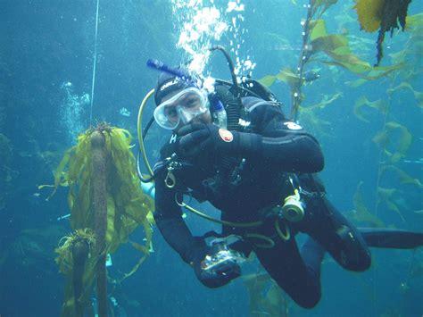 Monterey Scuba Dive Boats by Diving Monterey