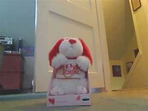 Singing Valentines Day Dog #1 - YouTube