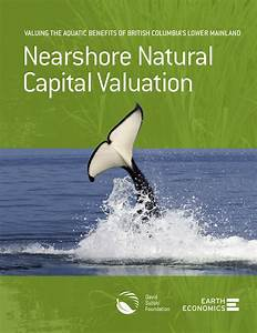 Nearshore Natural Capital Valuation: Valuing the Aquatic ...