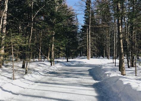 les patinoires ext 233 rieures au canada
