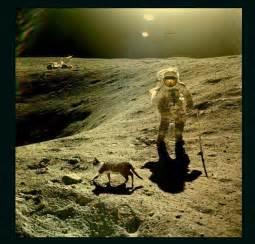 Top secret Nasa photo proves moon landing faked. | mricher426