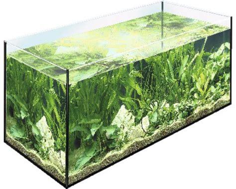 acheter aquarium 40 litres