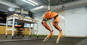 Inside the Mad Lab That's Getting Robots to Walk and Jump ...