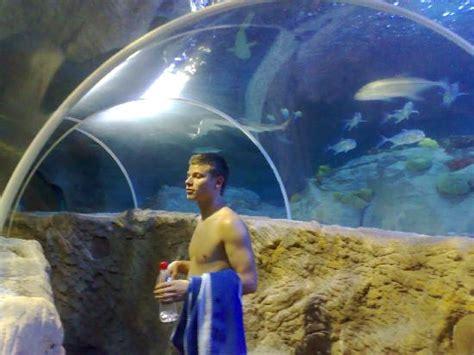 5 photo de sea aquarium benalmadena tripadvisor