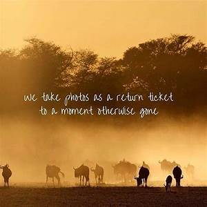 25+ best Africa quotes on Pinterest | South quotes ...