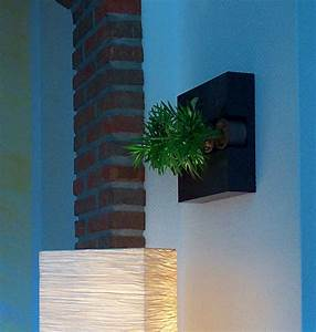Pflanzen An Der Wand : hingucker echte blumen an der wand die flowerbox ~ Markanthonyermac.com Haus und Dekorationen