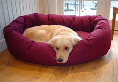 le tapis pour chien grande taille est ici