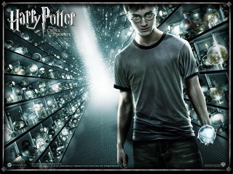 harry potter the order of the images harry potter hd wallpaper and background photos