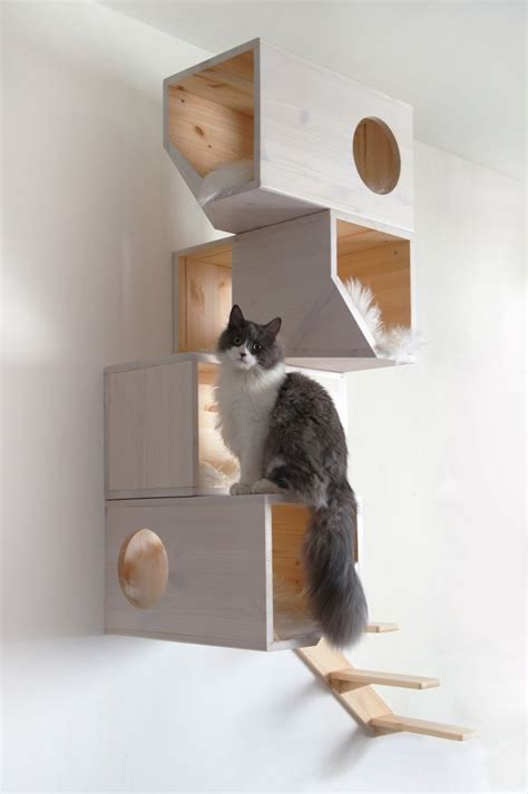 5 Stylish Modern Cat Trees For Design Lovers
