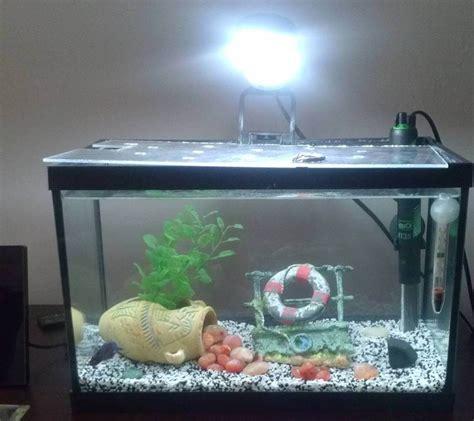 petit aquarium mundu fr