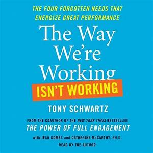 The Way We're Working Isn't Working - Audiobook (abridged ...