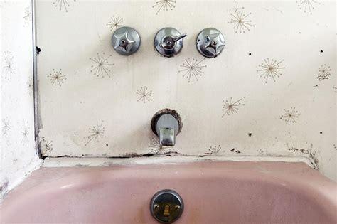 moisissure dans la salle de bain comment l 233 viter et la nettoyer