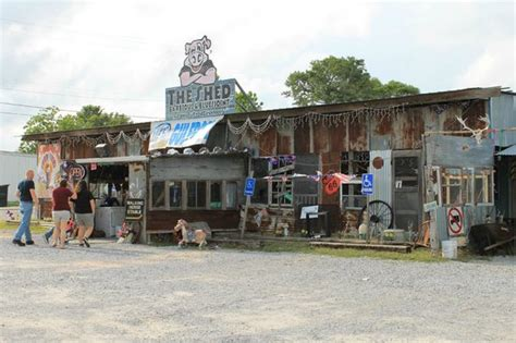 the shed picture of gulfport mississippi tripadvisor