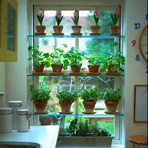 Kleines Regal Küche : tipps k chenfenster regale kleine blument pfe k che pinterest k chenfenster regale ~ Markanthonyermac.com Haus und Dekorationen