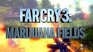 Far Cry 3: Marijuana Fields Mission - YouTube