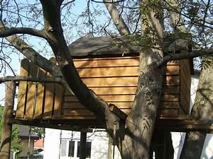 Wie Baue Ich Ein Gartenhaus : wie baue ich ein baumhaus vorgehensweise bei baumhaus ~ Markanthonyermac.com Haus und Dekorationen