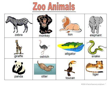 Ceip Sancho Ii 1º Y 2º Zoo Animals