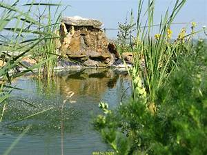 Teich Mit Wasserfall : teich mit wasserfall wasserfall und teichbau ~ Markanthonyermac.com Haus und Dekorationen