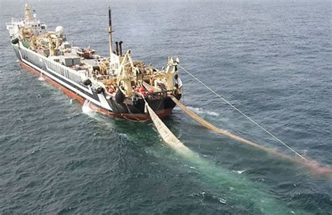 Fishing Boat Of India Var by Illegal Fishing A Problem In Indian Ocean Omani Vessels