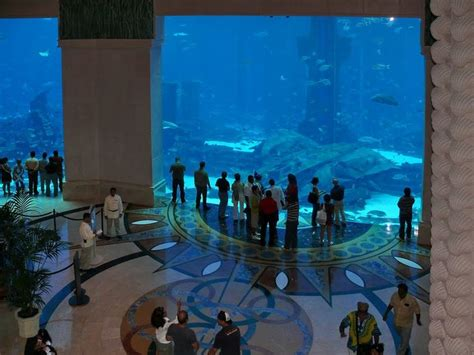 aquarium lobby of atlantis hotel in dubai places to go live hotels in dubai