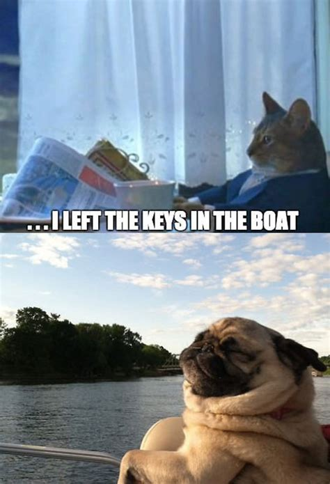 Boat Dog Quotes by Living The Pug Life The Meta Picture